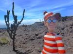 30/07/2013 – Equateur, Isabela - Galapagos : Charlie au sommet de son nème volcan, la Sierra Negra