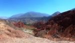 Puamarca 14