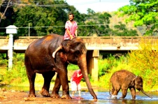 16 - Best of - Thailande, Chiang Mai