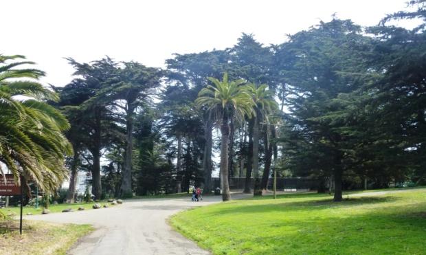 Le Parc Alamo. San Francisco, un mélange réussi entre gratte-ciels et espaces verts