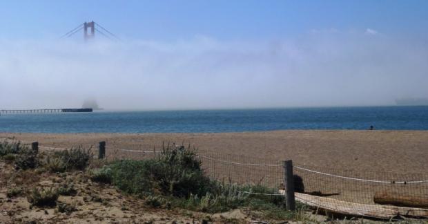Le déroit du Golden Gate est parfois pris dans d'intenses brouillards, un des nombreux défis auxquels l'équipe de construction a été confronté