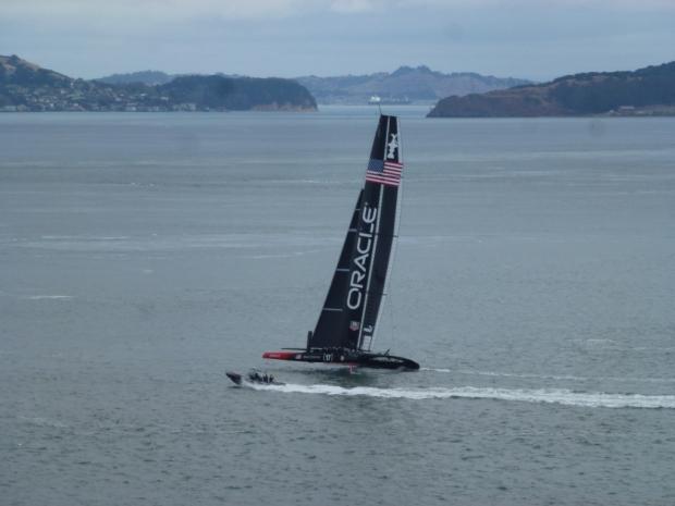 C'est dans la baie de San Francisco que se déroule la célèbre America's Cup. I faut voir ces bâteaux géants effleurer l'eau et filer à des vitesses supersoniques pour le croire. Malheureusement, lors de mon séjour, le marin britannique Andrew Simpson, double médaillé olympique de voile, est décédé lors du chavirage du catamaran de l'équipe suédoise Artemis Racing