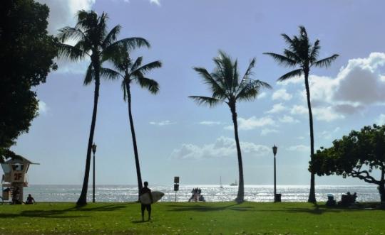 Sun, sea and surf