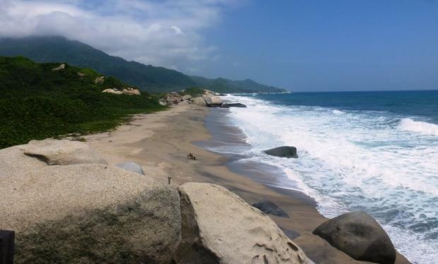 Des plages et des vagues de fou furieux