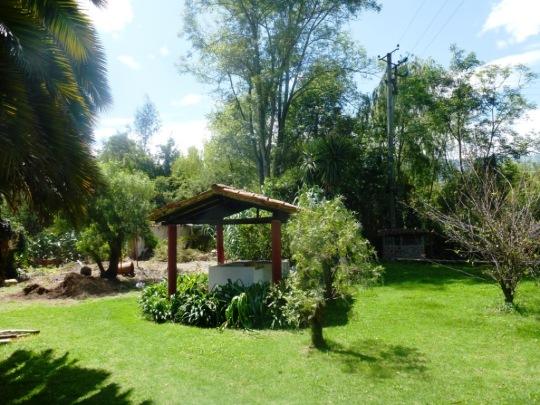 La Finca San Pedro, un pt'it coin de Paradis
