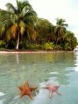 Beaches - Panama - Bocas del Toro (2)