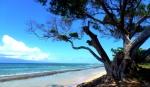Beaches - USA - Hawaii - Maui