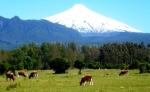 Mountains - Chili - Pucon