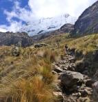Mountains - Pérou - Laguna 69 (1)