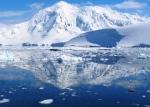 Nature - Antarctique (2)