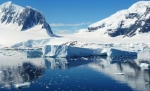 Nature - Antarctique (3)