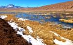 Nature - Chili - Atacama (2)
