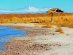 Nature - Chili - Atacama (3)