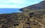 Nature - Chili - Île de Pâques