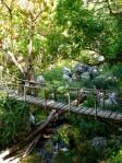 Nature - Cuba - Parc Cubano