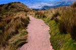 Nature - Equateur - Quito