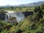 Nature -Ethiopie - Bahir Dar (2)