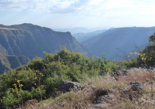 Simien Mountains - Day 1 (15)