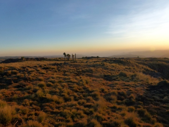Simien Mountains - Day 2 (34)