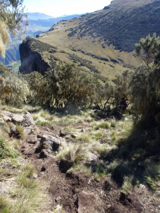 Simien Mountains - Day 3 (10)