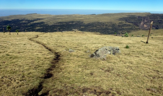 Simien Mountains - Day 3 (13)
