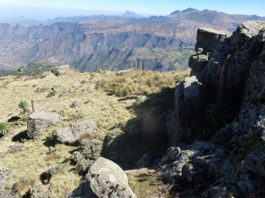 Simien Mountains - Day 3 (18)