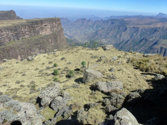 Simien Mountains - Day 3 (19)