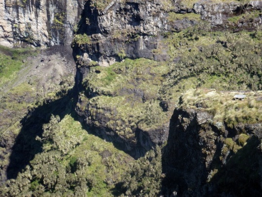 Simien Mountains - Day 3 (26)