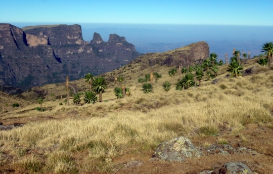 Simien Mountains - Day 4 (8)